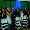 On December 24, 2013, the New Year concert was held in the NUPh
